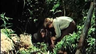 Huckleberry Finn és barátai 11. rész
