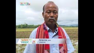 upendra-rabha-pioneer-of-black-rice-in-assam