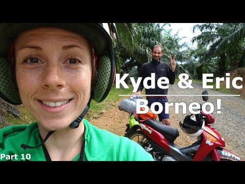 Borneo! | Teeming with Life!