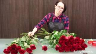 видео Длинные розы