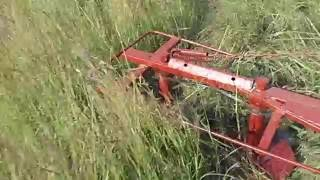 Минитрактор Мультик Первый покос роторной косилкой
