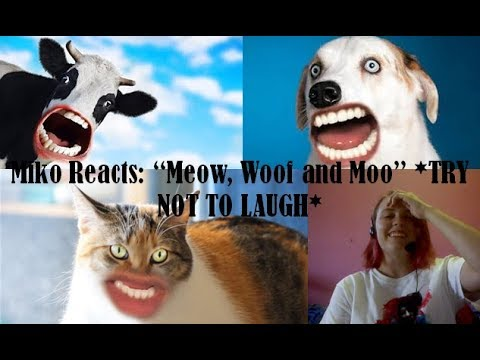 "Miko Reacts: ""Meow, Woof and Moo"" *TRY NOT TO LAUGH*"
