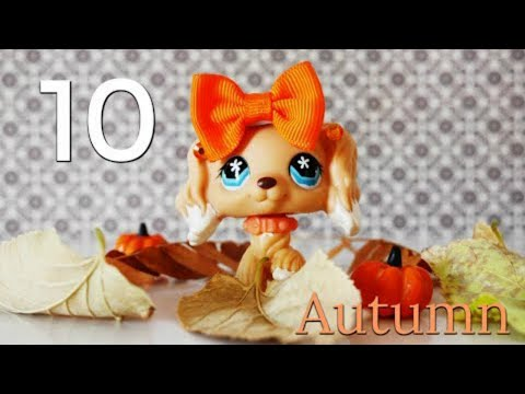 LPS: 10 Things I Hate About Autumn!