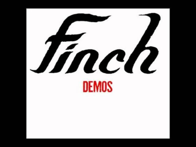 finch-christineavi-nashkenji