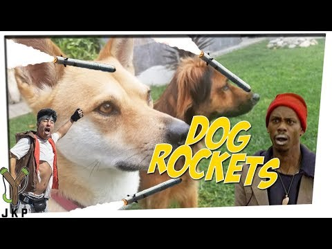 Joemalian Dogs Have Rockets!! | Psychiatrist