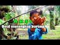 Bocah Lucu Bocil Menangkap Burung How To Catch Birds  Mp3 - Mp4 Download