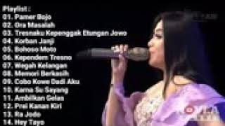 Top Hits -  Pamer Bojo Dangdut Koplo Sur Sari