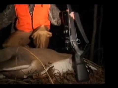 Bent Creek Lodge - Deer