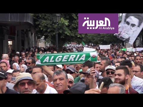 رئيس الأركان الجزائري يحذر مجددا معرقلي الانتخابات  - نشر قبل 2 ساعة