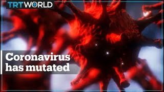The Coronavirus Has Mutated, And It Won't Be The Last Time