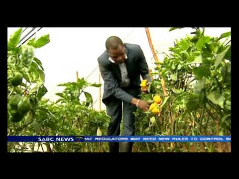 Kenya is looking into loans as a way of encouraging youth to be self employed