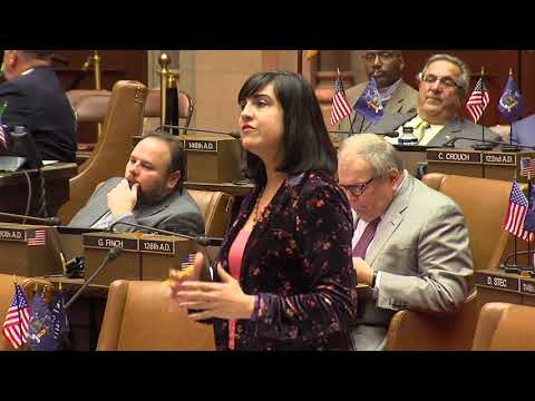 Assemblywoman Nicole Malliotakis Stands Up for NYCHA Residents