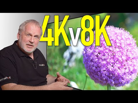 Can 4K be