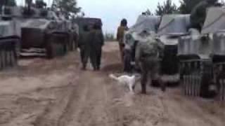 4 танкиста и собака 21 век (pol. Czterej pancerni i pies)