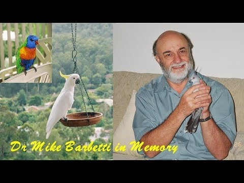 Dr Mike Barbetti In Memory (DrSeaSun621014B)