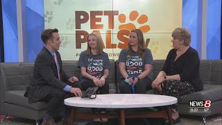 Pet Pals TV: Indy Professionals Advocating Animal Welfare