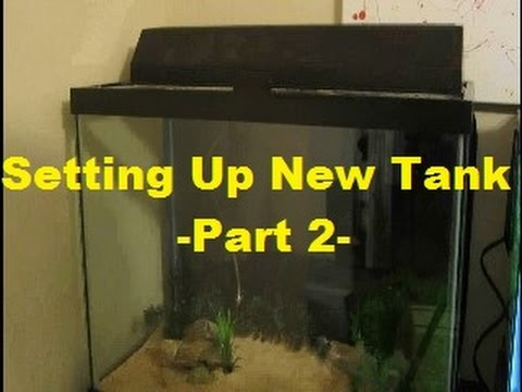 Setting up New Tank Part 2 (Dry Set Up)