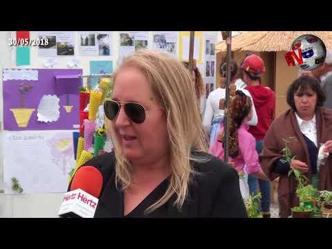 """ALCANENA – Feira do Tempo foi """"mostra"""" de aprendizagens do Agrupamento de Escolas cvídeo"""