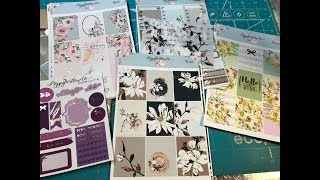 Poppy Willow Co Unboxing - Beautiful Foiled Planner Kits
