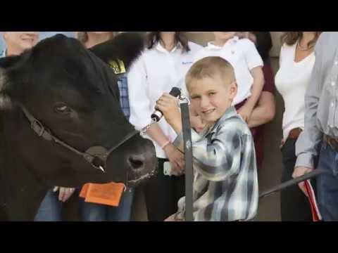 Anadarko:  2016 Weld County Fair Junior Livestock Auction
