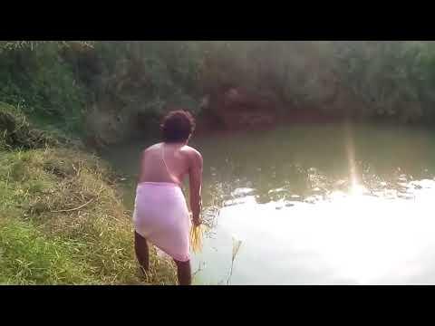 Fish culture in India