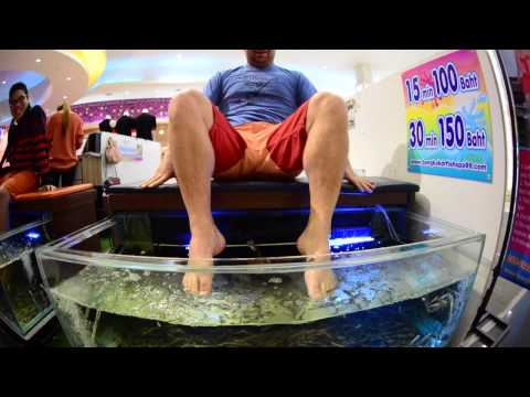 Fish Spa Therapy