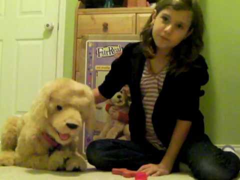 Biscuit My Lovin Pup Demonstration - Part 1