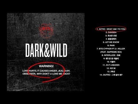 BTS (방탄소년단) Dark&Wild Full Album
