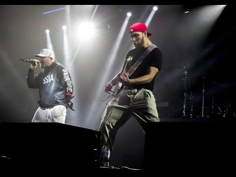 "Limp Bizkit - Pollution (DS'""Yunost"", Chelyabinsk, Russia, 12.11.2015)"