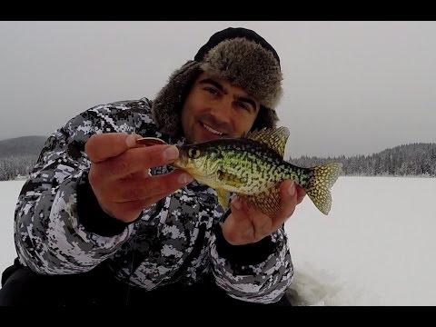 How to Catch Crappie Ice Fishing British Columbia - Whonnock Lake