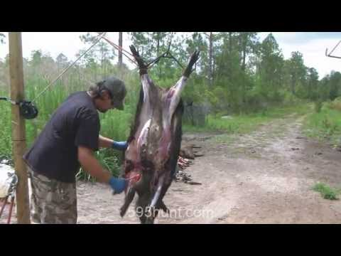 How to Clean a Hog