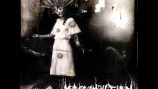 Heaven Shall Burn - Architect Of The Apocalypse