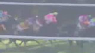 1995年菊花賞 - マヤノトップガン