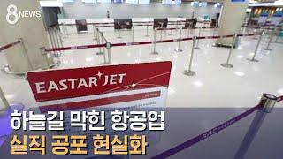 항공업 실직 공포 현실화…이스타항공 45% 감원 검토 / SBS