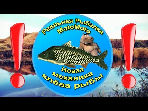 ❗ВАЖНО❗ НОВАЯ МЕХАНИКА КЛЁВА | Реальная Рыбалка. К просмотру обязательно ☝