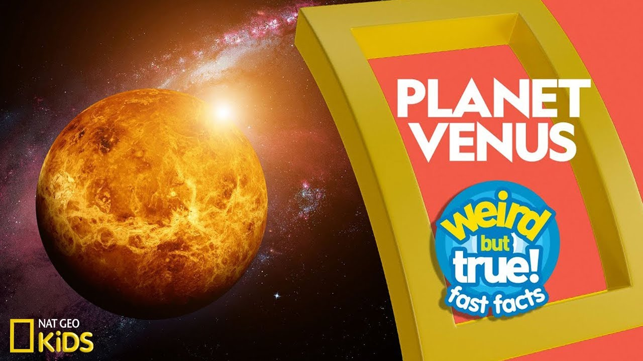 Planet Venus | Weird But True!—Fast Facts
