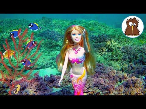 Barbie Aventuras. La Sirenita Exploradora Pescada mientras Juega en el Mar | Muñecas Barbie Español