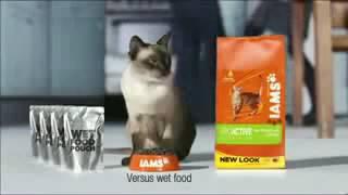 Промо корма для котов и кошек - IAMS