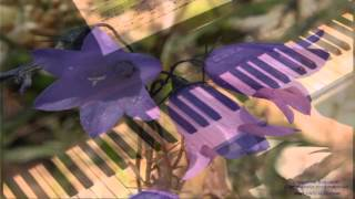 The Bluebells of Scotland – Piano