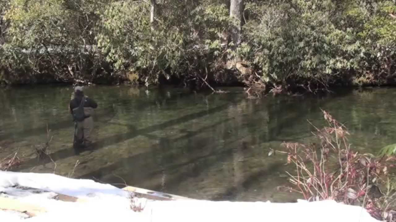 Fly fishing the davidson river 2 17 10 youtube for Davidson river fly fishing