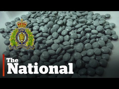 Mounties need more cash to catch fentanyl traffickers