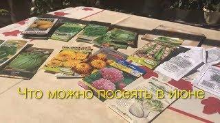видео Какие цветы можно посадить осенью