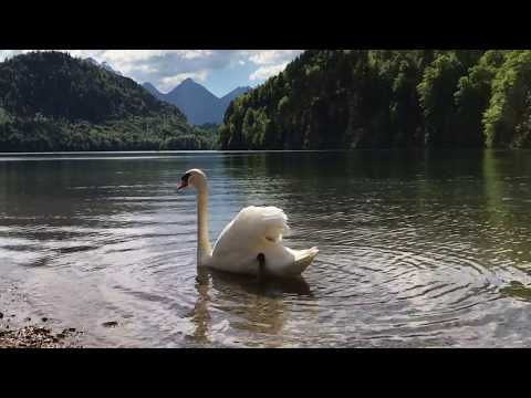Classical Indian Music Veena by Music for Deep Meditation Lake Alpsee, Bavaria, Germany.