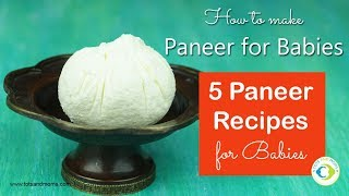 How to make Paneer for Babies | 5 Paneer Recipes for Babies