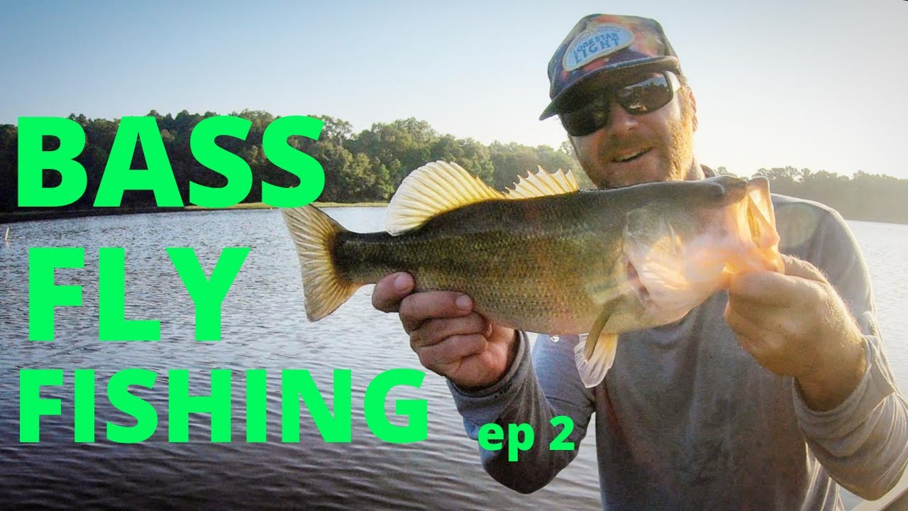 BASS FLY FISHING ep. 2 ( how to)