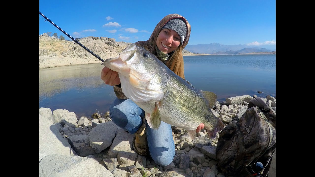 First swimbait fish 71lbs savage gear line thru trout youtube freerunsca Images