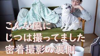【密着MANIACS】ソファーのこうめさんを可愛く撮る工夫 thumbnail