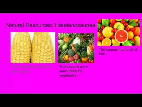 Haudenosaunee and Algonquians (Matthew)