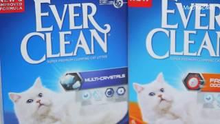 Наполнители Ever Clean в зоомагазине Мир Корма