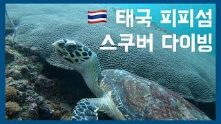 태국 피피섬 (Kho PhiPhi) 스쿠버 다이빙 l…